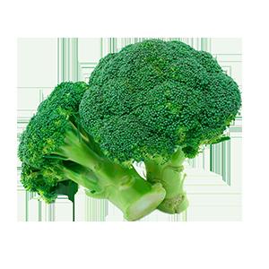 Bulk Broccoli from Greenworld